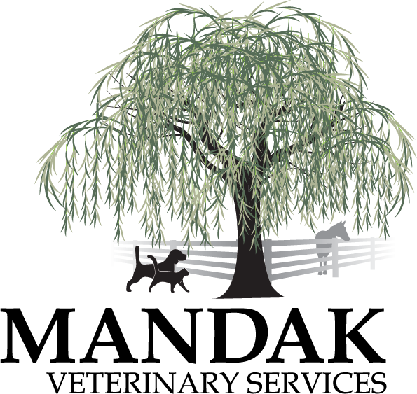 Veterinary care for dogs, cats, horses and llamas near Albany NY